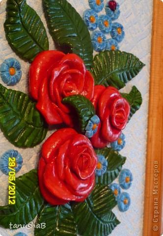 Эти розы я подарила одному очень хорошему человеку в знак благодарности... фото 3