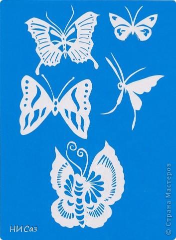 Вот и снова бабочки. фото 11