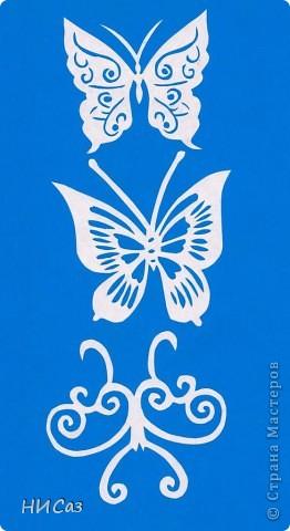 Вот и снова бабочки. фото 12