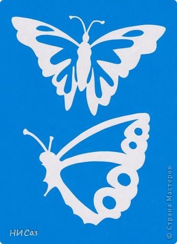 Вот и снова бабочки. фото 13