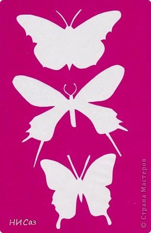 Вот и снова бабочки. фото 14