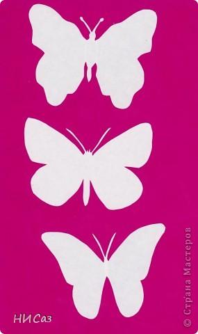 Вот и снова бабочки. фото 15