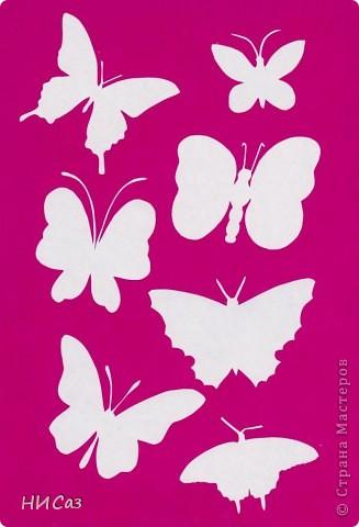 Вот и снова бабочки. фото 16