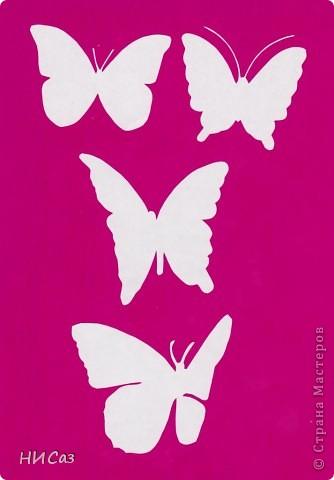 Вот и снова бабочки. фото 17