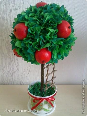Яблочное фото 1