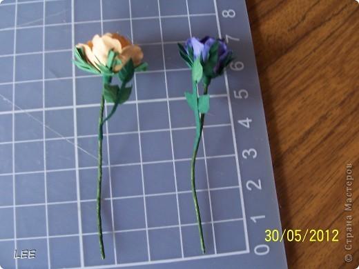 Давно хотела попробовать сама сделать розы. Всё смотрела здесь как делают мастерицы, и вот купив компостер решилась на их производство самостоятельно. Внимательно изучив МК http://asti-n.ya.ru/replies.xml?item_no=550, приступила.  фото 4