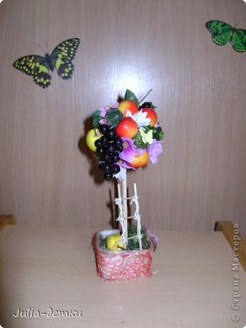 Первые мои фруктовые топиарии. 30 см. Забавный горшочек попался. Фрукты- не супер качества,  купленны на базаре, но общее впечатление позитивное. Палочка- бамбук.  Божьи коровки  там живут!!  фото 2