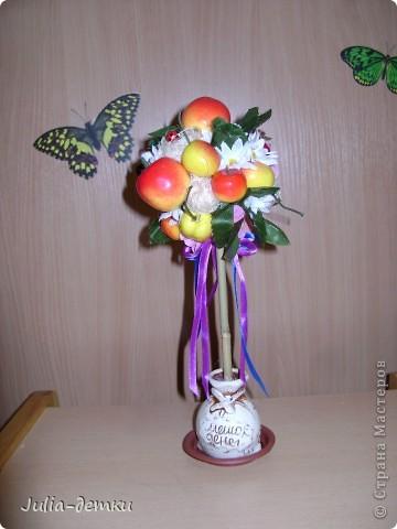 Первые мои фруктовые топиарии. 30 см. Забавный горшочек попался. Фрукты- не супер качества,  купленны на базаре, но общее впечатление позитивное. Палочка- бамбук.  Божьи коровки  там живут!!  фото 1