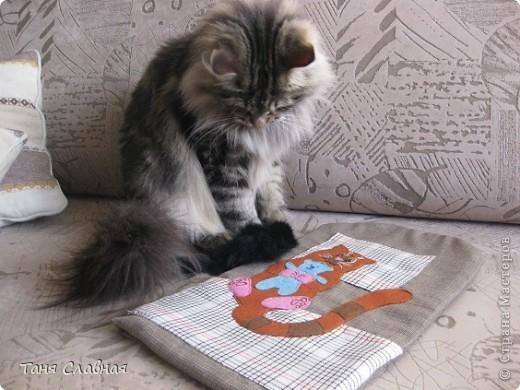 Матрасик в кошачью переноску фото 6
