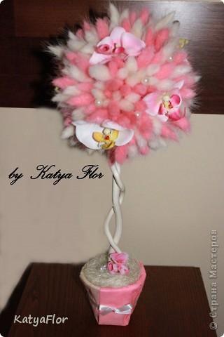 Деревце из сухоцветов (лагурус),цветочки искусственные (фаленопсис),бусины. фото 1
