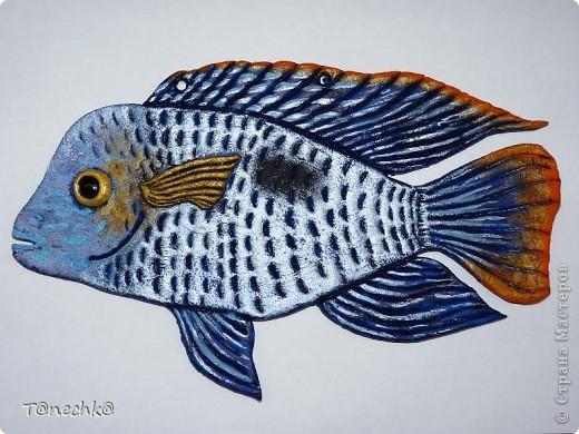 Знакомьтесь, Акара бирюзовая, в моем исполнении. Делала в подарок для одного любителя аквариумных рыбок. Надеюсь подарок понравится!  фото 3