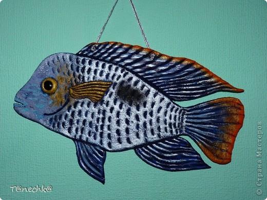 Знакомьтесь, Акара бирюзовая, в моем исполнении. Делала в подарок для одного любителя аквариумных рыбок. Надеюсь подарок понравится!  фото 5