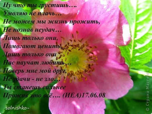 стих мой, фото подруги (р.Б. Татиана).... фото 11