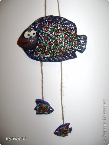 мои рыбки фото 1