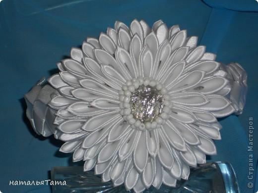 новый цветок фото 2