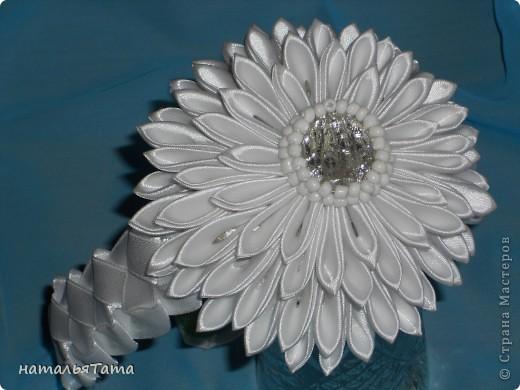 новый цветок фото 1