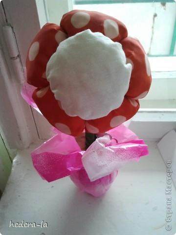 Мягкие цветочки фото 1