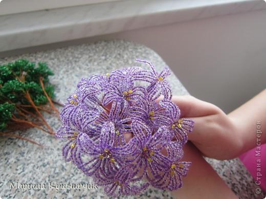 Вот и он!!!Весенний любимый цветочек) фото 2