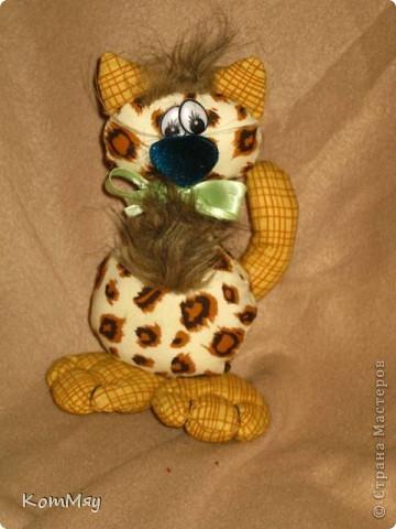 Киска в мой домашний музей. Зовут Леопардо - почти Леонардо... Натура мечтательная, романтичная...  фото 2