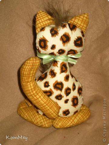 Киска в мой домашний музей. Зовут Леопардо - почти Леонардо... Натура мечтательная, романтичная...  фото 3