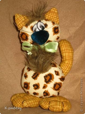 Киска в мой домашний музей. Зовут Леопардо - почти Леонардо... Натура мечтательная, романтичная...  фото 5