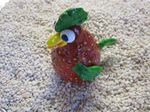 Рада приветствовать ВАС! Идею петушка- ягодки  увидела в цветочном магазине,так он мне понравился, что захотелось повторить самой. Высотой мой петушок не более 10 см. Родился голодный, поэтому фотографировала его за обедом. фото 2