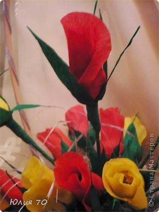 Мои первые бутончики роз! фото 2