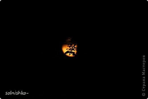 люблю ночное небо.. фото 2