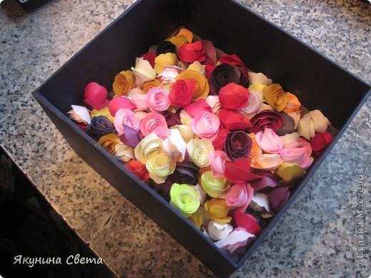 Фея розового сада фото 2