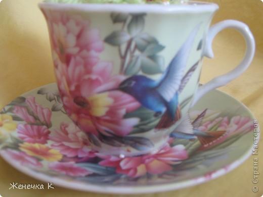 """Орхидея """"Розовый фламинго"""" фото 4"""