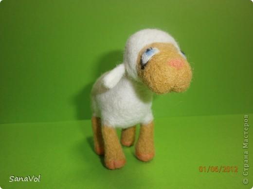 Из шерсти и любви родилась эта маленькая овечка. Вопросительно и доверчиво она смотрит на этот мир. фото 2