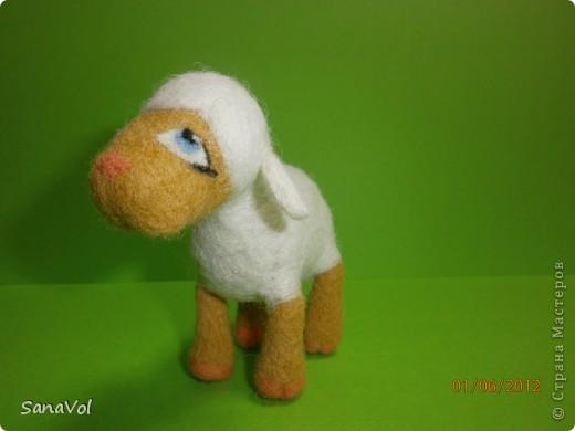Из шерсти и любви родилась эта маленькая овечка. Вопросительно и доверчиво она смотрит на этот мир. фото 3