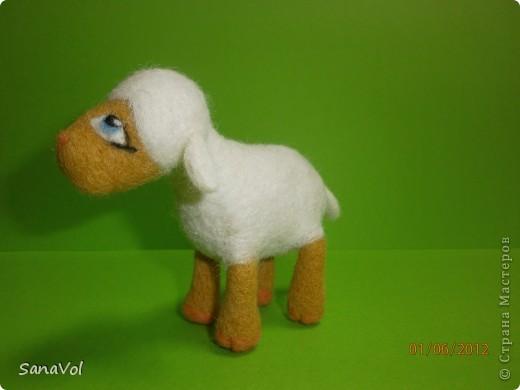 Из шерсти и любви родилась эта маленькая овечка. Вопросительно и доверчиво она смотрит на этот мир. фото 4