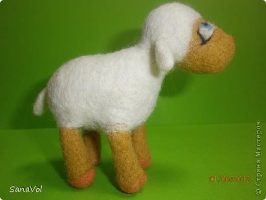 Из шерсти и любви родилась эта маленькая овечка. Вопросительно и доверчиво она смотрит на этот мир. фото 5