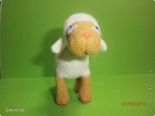 Из шерсти и любви родилась эта маленькая овечка. Вопросительно и доверчиво она смотрит на этот мир. фото 7