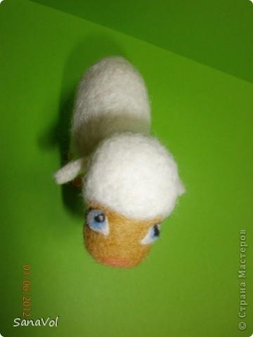 Из шерсти и любви родилась эта маленькая овечка. Вопросительно и доверчиво она смотрит на этот мир. фото 8