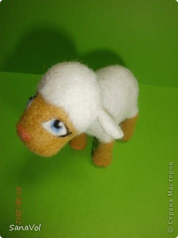 Из шерсти и любви родилась эта маленькая овечка. Вопросительно и доверчиво она смотрит на этот мир. фото 10