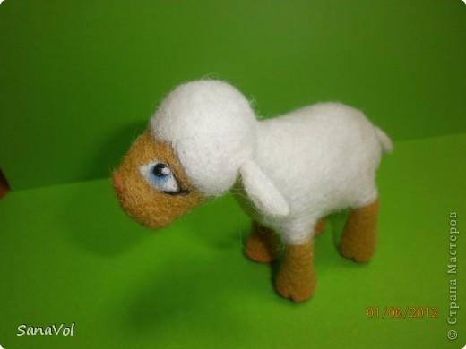 Из шерсти и любви родилась эта маленькая овечка. Вопросительно и доверчиво она смотрит на этот мир. фото 1