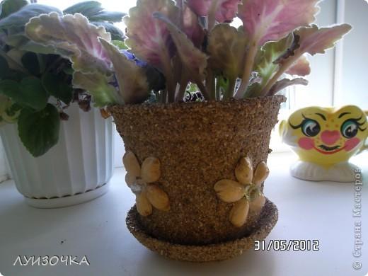 горшочки для цветов фото 7