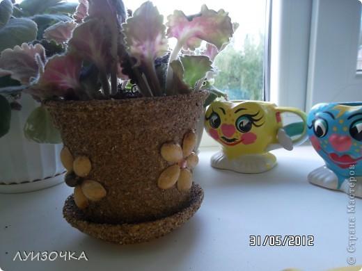 горшочки для цветов фото 8