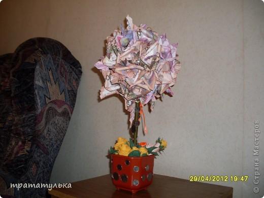моеденежное деревце!было сделано брату на день варенье! фото 1