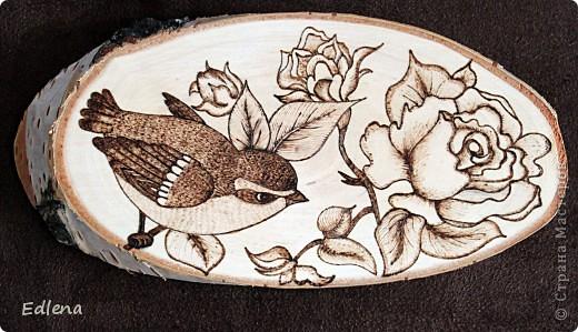 У окна растет роза, сейчас вся в цвету, и птахи с нее мурашиков и тлю лопают), оттуда и идея).