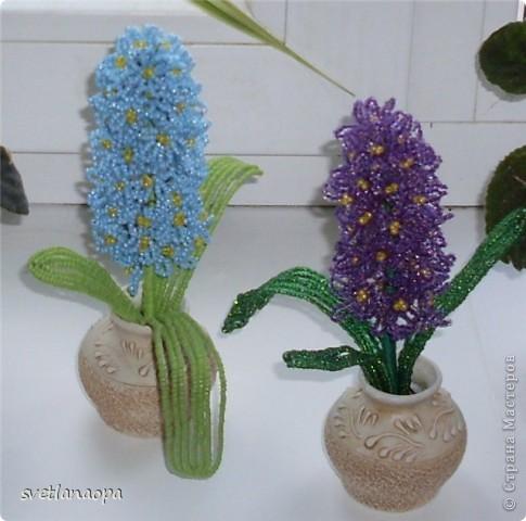 0. 130. бусина. цветок объёмный.  Гиацинты к 8 марта.