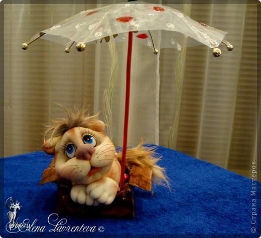 Маленький котенок под дождем промок... фото 14