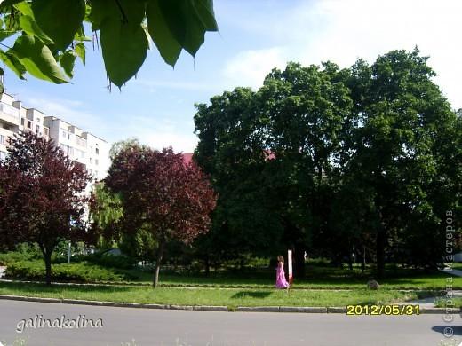 По календарю вчера наступило лето,а я хочу показать вам,дорогие девочки,каким был последний день весны этого,2012 года,в моём родном городе,в Тирасполе.  фото 2
