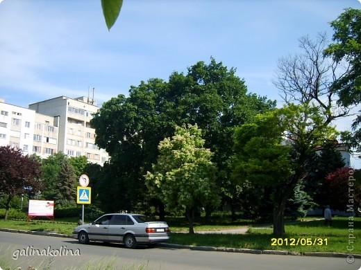 По календарю вчера наступило лето,а я хочу показать вам,дорогие девочки,каким был последний день весны этого,2012 года,в моём родном городе,в Тирасполе.  фото 6