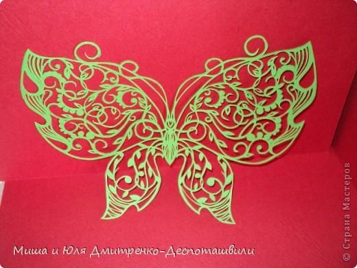 Бабочка с летней поляны фото 1
