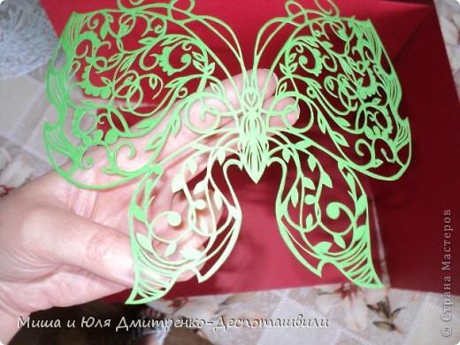 Бабочка с летней поляны фото 2