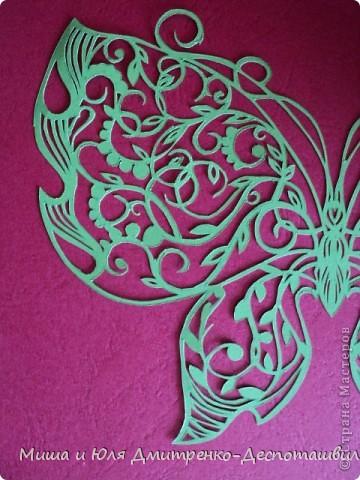 Бабочка с летней поляны фото 3