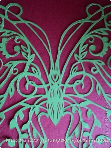 Бабочка с летней поляны фото 4